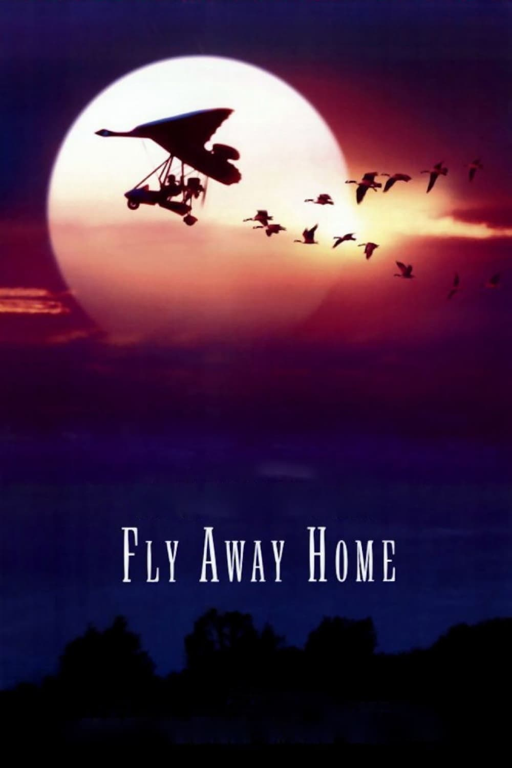 """Poster for the movie """"Fly Away Home"""""""