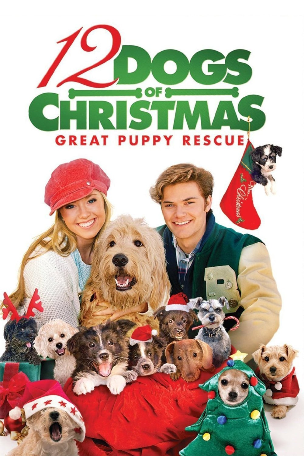 """Poster for the movie """"12 Dogs of Christmas: Great Puppy Rescue"""""""